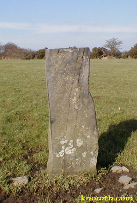 Standing Stone located 200 metres to the South East of Ardcath Mound